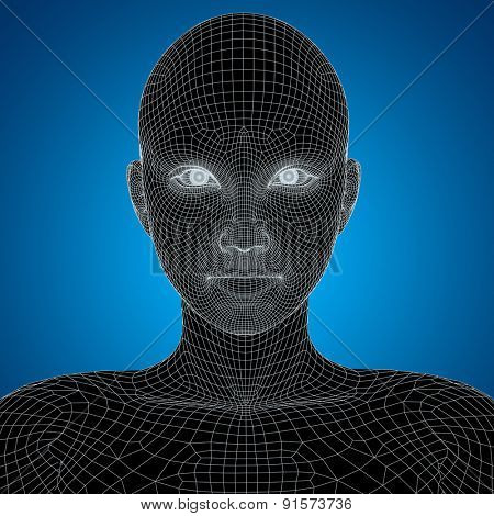Concept or conceptual 3D wireframe young human female or woman face or head on blue background