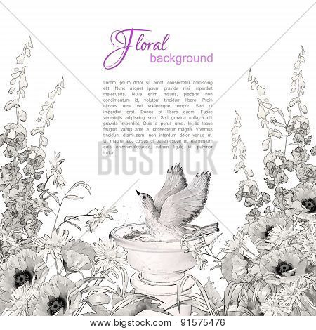 Vector Bird Bath Sketch Flowers