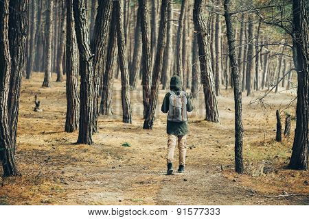 Traveler Woman Walking In A Pine Forest