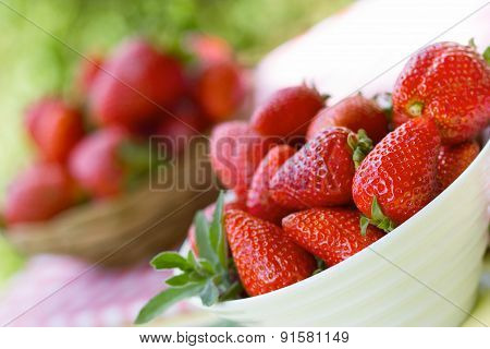 Fresh organic strawberries - seasonal fruit