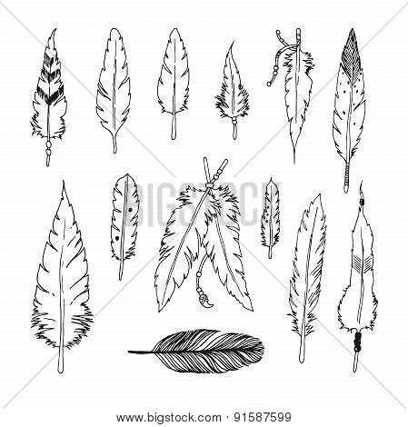Handdrawn set of feathers