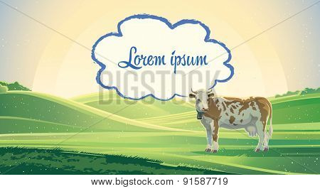 Rural landscape with cow.