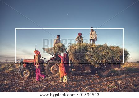 India Family Farming Harvesting Crops Concept