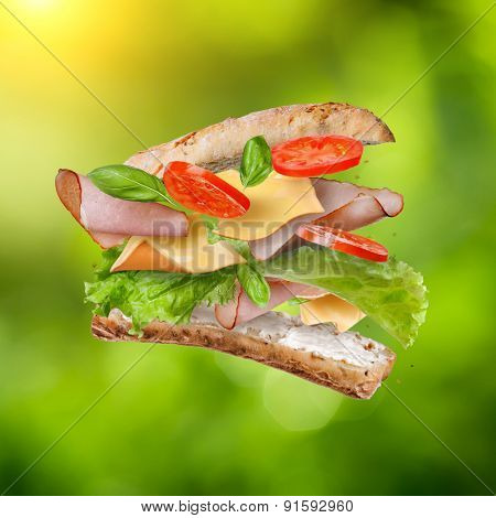 Sandwich with falling ingredients in the air against natural green background - slices of fresh tomatoes, ham, cheese and lettuce