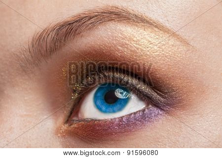 Macro image of blue  human woman eye with make up