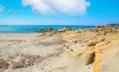 stock photo of shoreline  - Santa Reparata shoreline under a cloudy sky - JPG