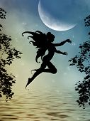 picture of moon silhouette  - fairy silhouette in a lake with big moon - JPG
