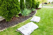 foto of manicured lawn  - Mulching flowerbeds around the house with bags of organic mulch from a nursery lying on a green lawn alongside a bed containing shrubs and evergreen Thuja trees in a yard work concept - JPG