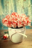 image of blue rose  - Pink roses in a pot on blue background  - JPG