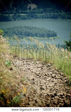 A trail on a ledge overlooking the Columbia Gorge
