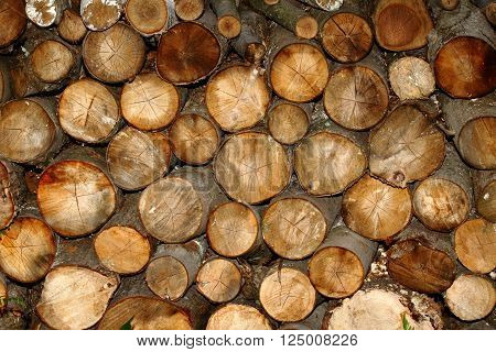 Randomly stacked logs in a wood pile.