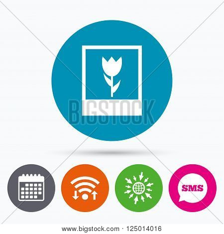 Wifi, Sms and calendar icons. Macro photo frame sign icon. Flower photography symbol. Go to web globe.