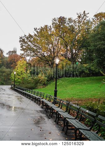 A row of empty benches in a rainy fall day in Central Park New York NY USA