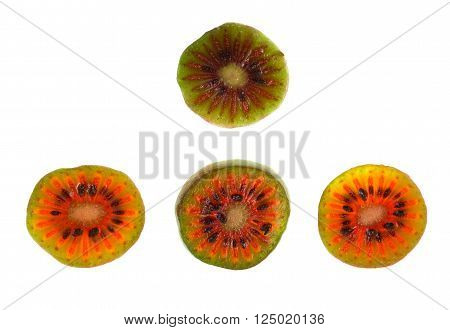 Slices of red Hardy Kiwi (Actinidia arguta) a perennial vine which produces a small fruit resembling the kiwifruit