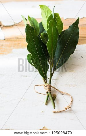 Bay leaves on rustic white wooden board