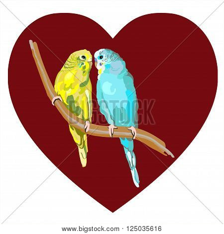cute Sun Conure or Sun Parakeets of birds isolated on white background colorful parrot couple perched on branch bird wildlife image illustrated in hand drawn