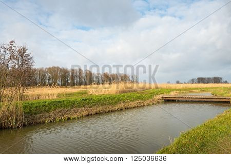 Simple wooden bridge made of planks bridges a small creek in a Dutch nature reserve on an cloudy day at the beginning of spring.