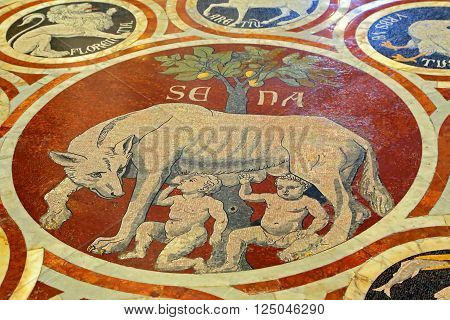 SIENA, ITALY - MARCH 12, 2014: Mosaic OF wolf suckling, symbol of the city. Inside view of thInterior of Siena Cathedral in Tuscany Italye duomo SienA