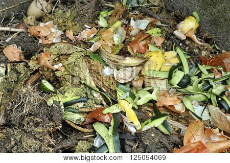 Garden compost heap with garden and kitchen food waste for home recycling.