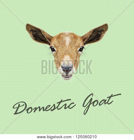 Cute face of beige Goat on green background.
