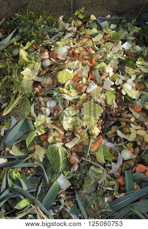 Household raw food waste, vegetables fruit peel and green refuse on a garden compost heap for recycling.