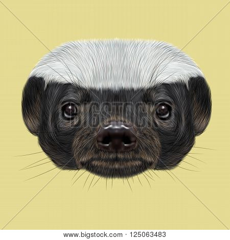 Cute face of ratel on yellow background.