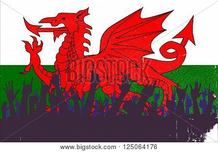Audience happy reaction with the Welsh flag background