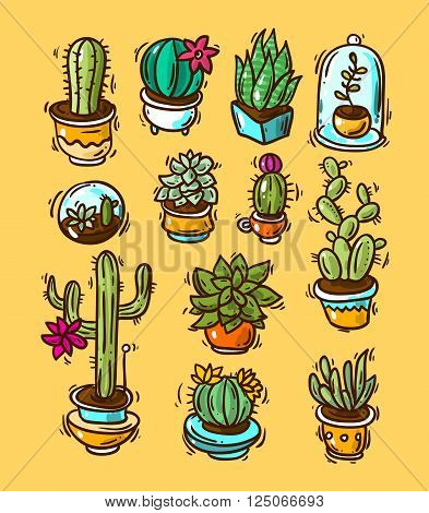Beautiful hand drawn vector illustration cacti and succulents. Doodle style