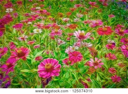 Nature photosflowers focused on customized designs.  Colorful flowers beautiful natural green background. Effects added