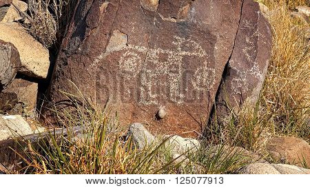 Ancient petroglyph carved into rock at Three Rivers Petroglyph Site in New Mexico
