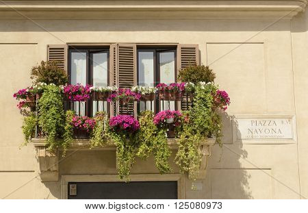 balcony entwined with flowers on the Piazza Navona in Rome