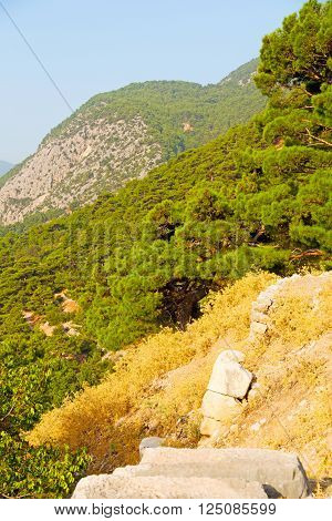 Olympos   Hill In Asia Turkey  And Nature