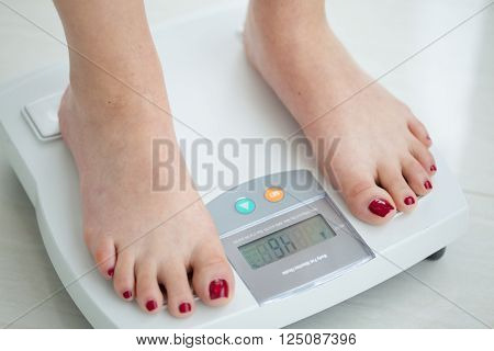 Scale to measure the body fat percentage
