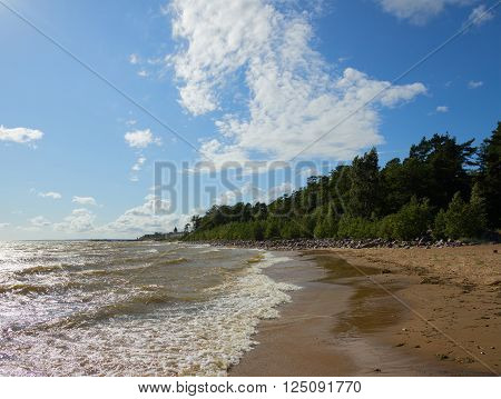 Sunny windy day with clouds.Baltic sea coast