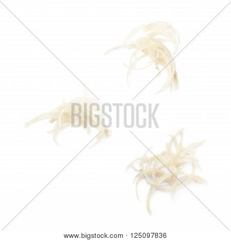 Pile of dirty cut human nails isolated over the white background, set of three different foreshortenings