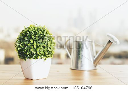 Wooden desktop with small plant and iron watering-can
