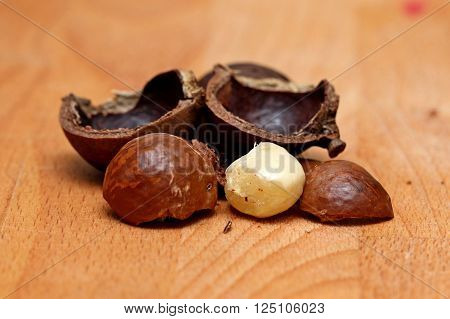 macadamia nuts cracked open macadamia nut shells