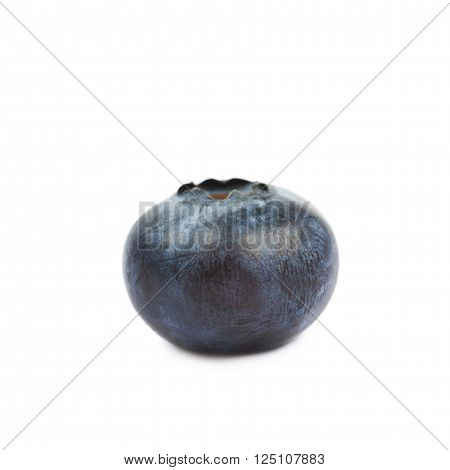 Single ripe bilberry isolated over the white background