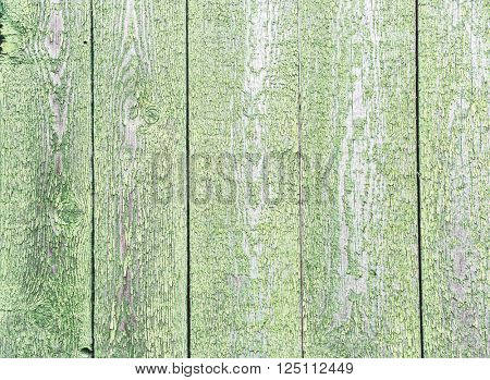 Old green wooden fence. Picture of wooden structure.