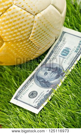 Football sitting on grass surface with dollar bills lying around it, betting concept.