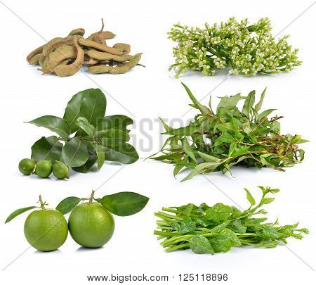 Vietnamese mint Malabar spinach sweet orange macadamia tamarind Ceylon Spinach on white background
