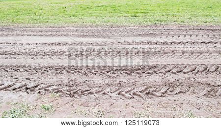 Tractor track on dirt road next to grass field in a country