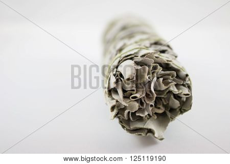 Sage for smudging houses and ceremony to cleanse the house for good luck