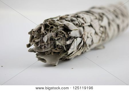 Sacred sage for smudging, belief, hope, cleansing house
