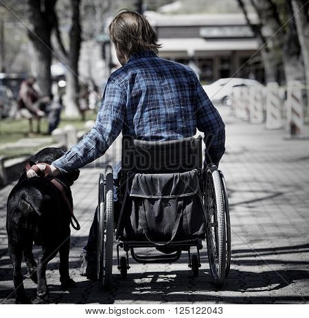 man with wheelchair and guide dog on sidewalk
