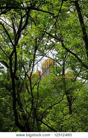 View Of The Golden Domes Of Orthodox Cathedral Through The Foliage