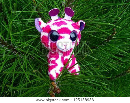 Pink plush giraffe sitting on the pine tree