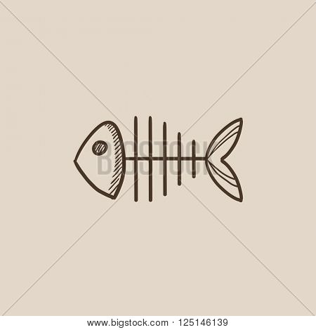 Fish skeleton sketch icon.