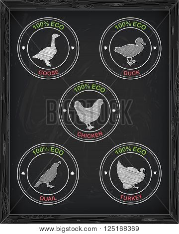 Beautiful Icons Chicken Turkey Duck Goose Quail