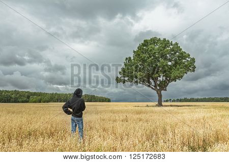 Back view of boy wearing black hooded sweatshirt and blue jeans looking at stunning summer landscape with dark storm clouds and huge oak tree in oat field